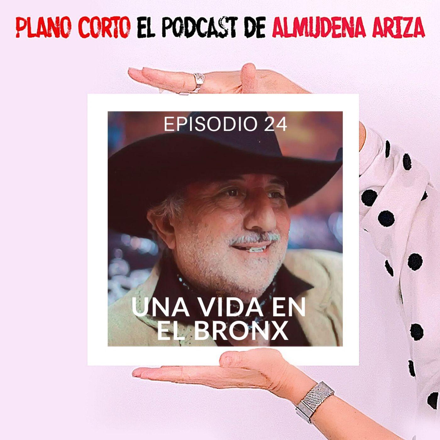 Una vida en el Bronx