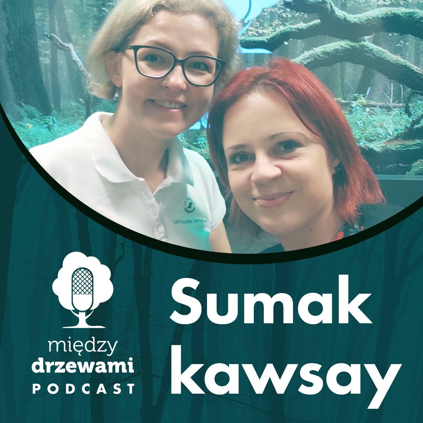 Między Drzewami #84 Sumak kawsay. O idei zrównoważonego rozwoju [Barbara Rymaszewska]