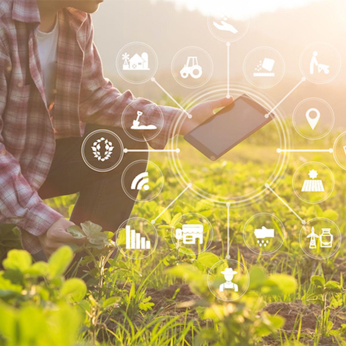 RADIO ANTARES VISION - Il potenziale dell'AI nel settore agroalimentare verso una prospettiva globale in termini di sostenibilità