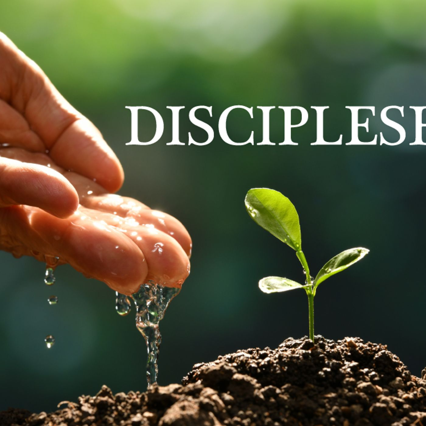 Jesus and Discipleship Pt 5