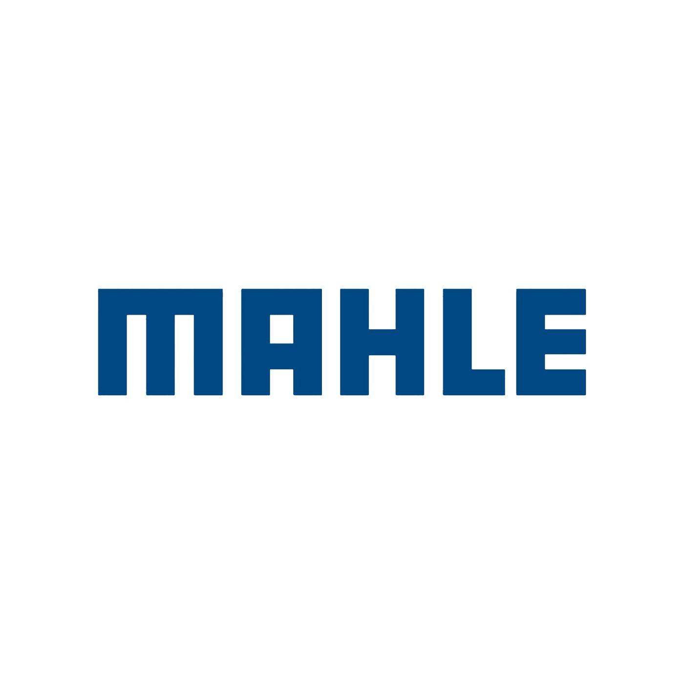 Teleconferência Resultados MAHLE Metal Leve 2019 3T19