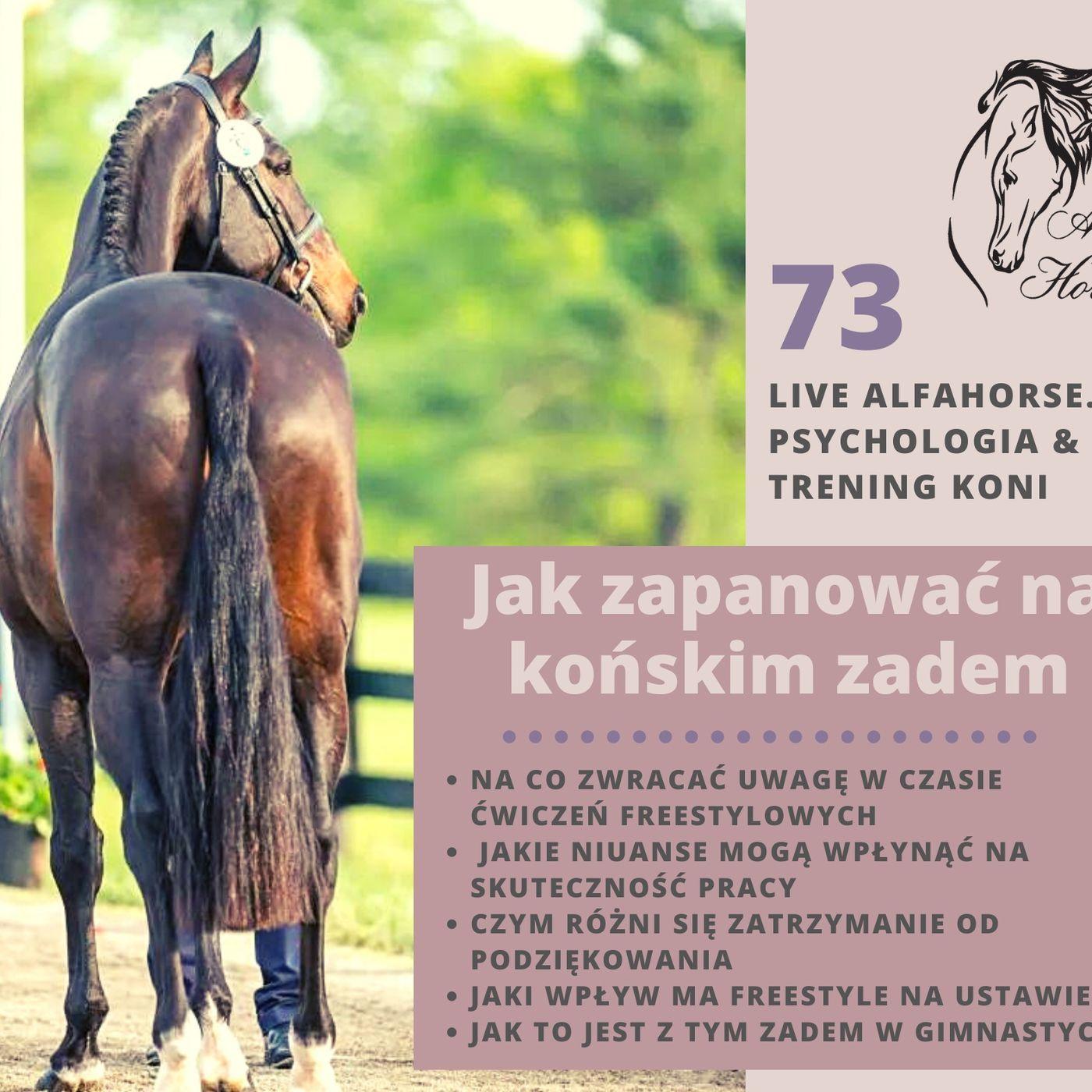 Live 73: Jak zapanować nad końskim zadem