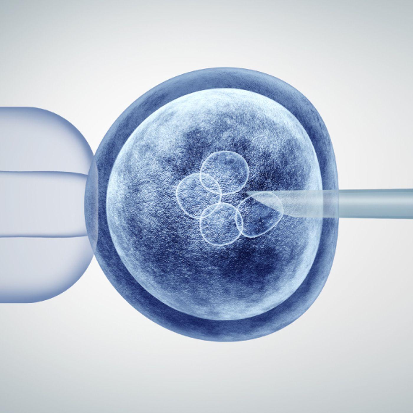 Editing Human Embryos