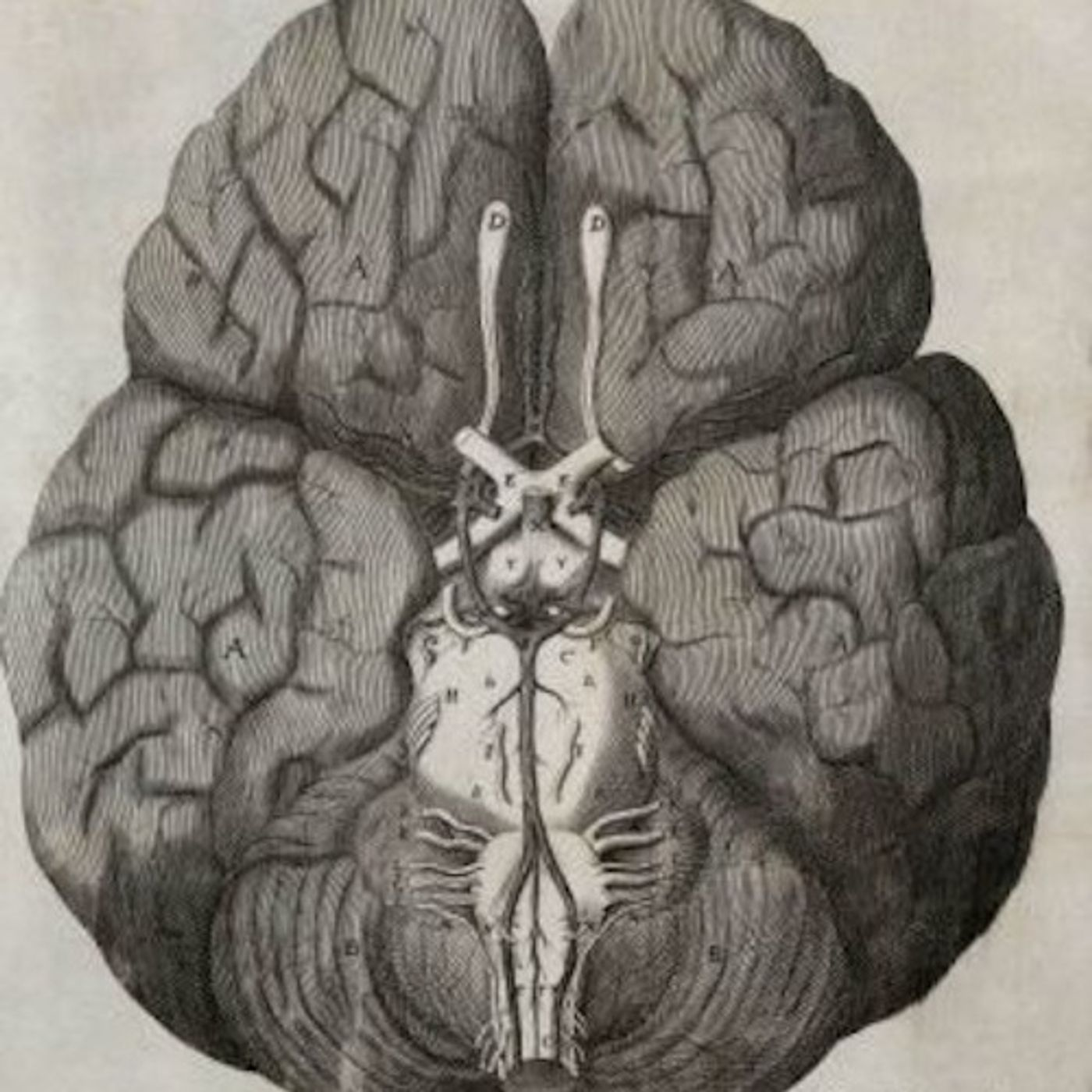 Thomas Willis y Robert Boyle | Mentes Covalentes #21