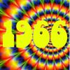 Reelin' in the Years July 16th 1966