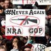 Gli USA contro le armi: Lorenza Pieri da Washington