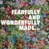 Fearfully and Wonderfully Made...