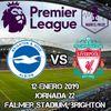 Brighton and Hove Albion vs Liverpool en VIVO