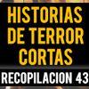 Historias De Terror Cortas Vol. 43 (Relatos De Horror)