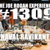 #1309 - Naval Ravikant