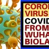 DID THE CORONAVIRUS COME FROM A CHINESE BIOLAB?