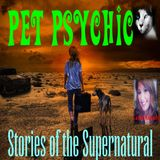 Pet Psychic Messages of Love | Interview w/ Carrie Kenady | Podcast