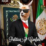 Política y Confort 13
