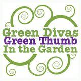 Green Divas in the Garden