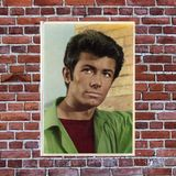 George Chakiris from West Side Story and more