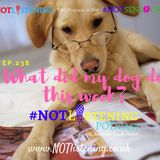 Ep.238 -  What did my dog do this week | #NOTlistening