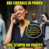 Lid Radio Show Podcasts Are Liberals NUTS?