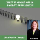 Watt Is Going on in Energy Efficiency?