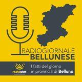 Radiogiornale bellunese