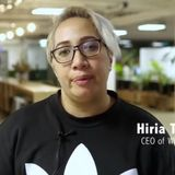 Healthy Homes Hikoi - Open Source People Are Bad A$$!