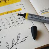 217. Objectif 500 mots par jour !