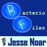 Jesse Noar
