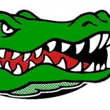 Delhi Charter School Gators