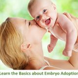 Embryo Donation and Adoption The Affordable Choice