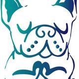 Dog Guru