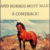 AGGRESSIVE TALK RADIO - America's Wild Horse's And Burros Must Make A Comeback