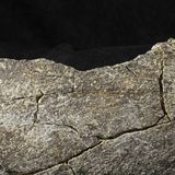 Humans in California 130,000 Years Ago? New Discovery