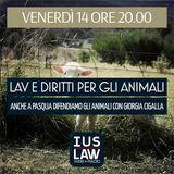LAV - SPECIALE - Diritti per gli Animali - Anche a Pasqua difendiamo i diritti degli Animali