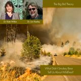 What Didn't Smokey Bear Tell Us About Wildfires?