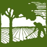 Illinois Specialty Crop Podcast Series