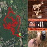 037. Broken but not beaten; Goat Hill 50K Race Report
