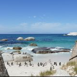 14. Accidentally in Cape Town!