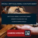 SPECIALE | DIRITTI DEGLI ANIMALI: A CHE PUNTO SIAMO? -  Venerdì 15 Giugno 2018 #Speciali