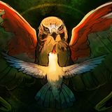 The Hawk & The Hummingbird