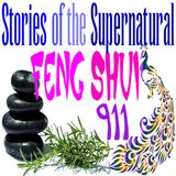 Feng Shui 911 | Interview with Tisha Morris | Podcast