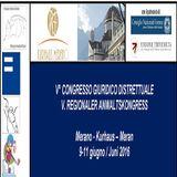 Sessione CIVILE - la Diffamazione WEB e Oblio - 5 Congr. Giuridico, Merano 10.06.2016