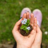 10. Vuoi consumare meno e essere più green? Un Home Energy Advisor può aiutarti