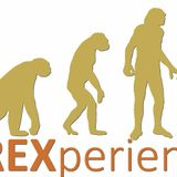 FOREXperiences