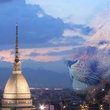 Torino Oggi - Episodio 106 - il Giorno prima