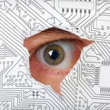 Spying, Lying and Obtaining Data