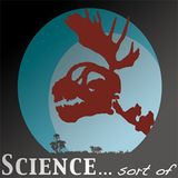 Ep 141: Science... sort of - Hot Dog