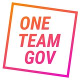 One Team Gov