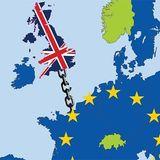 EU referendum: the big decision