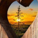 Buongiorno, oggi meditazione di Amore e Gratitudine in movimento! ✌🏻💗✨
