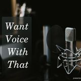 """""""Want Voice With That"""" by Agile Audio Dashboards (Pilot Episode)"""