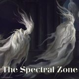 The Spectral Zone - Luke Walker and Vinnie Vineyard